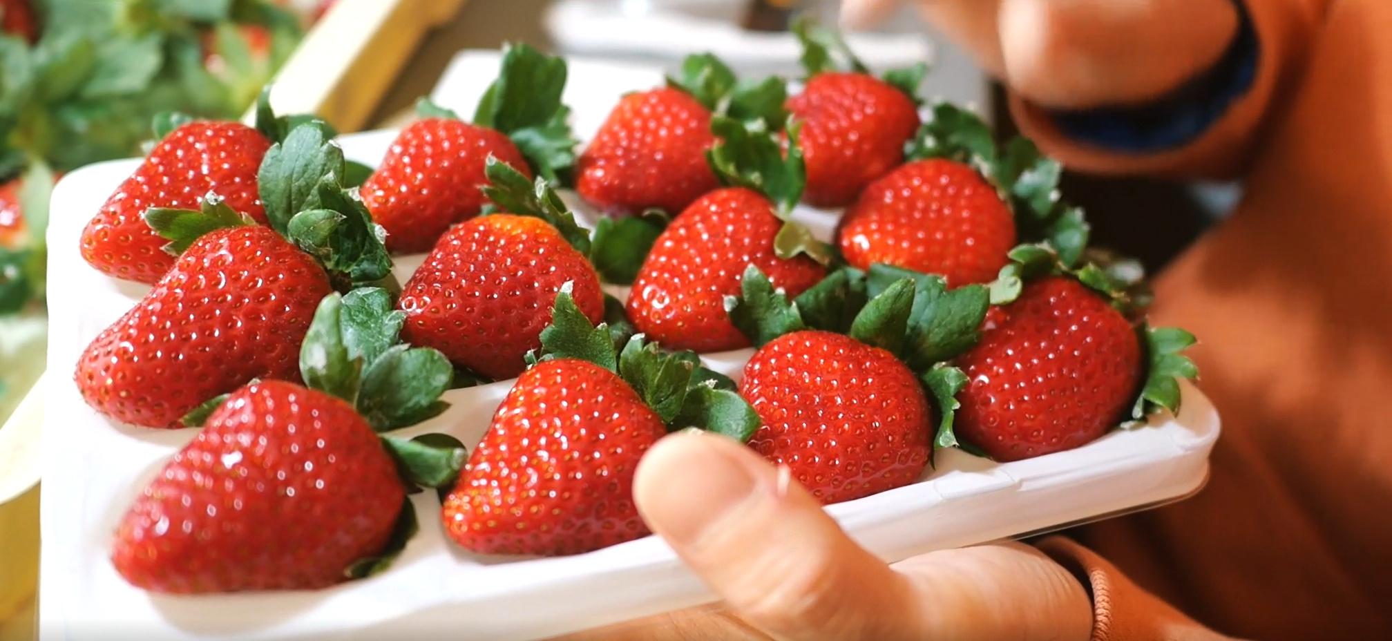 イチゴと幸せを届けたい